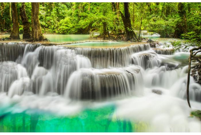 Модульная картина Лесной Водопад